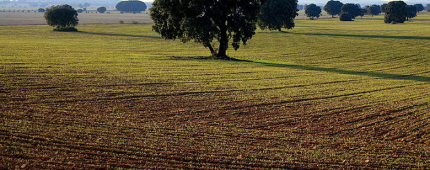 La Mancha wine tour madrid