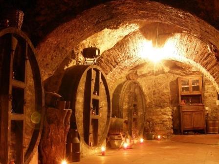 Bodega medieval Ribera Duero
